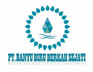 logo-b3s